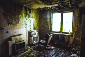 Mouldy Room